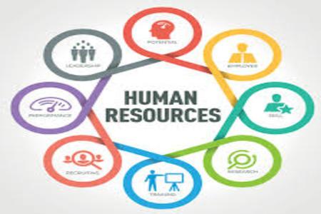 човешки ресурси 11