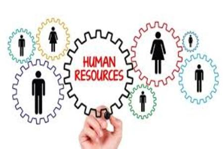 човешки ресурси 32