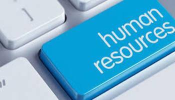 човешките ресурси 4 активности и контакти в човешките ресурси